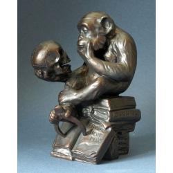 Affe mit Schädel - 'The Darwin Monkey'