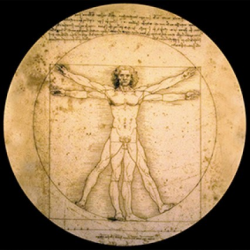Presse Papiers The Vitruvian man